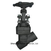 Pressure Seal A105 Y Type Thread Globe Valve